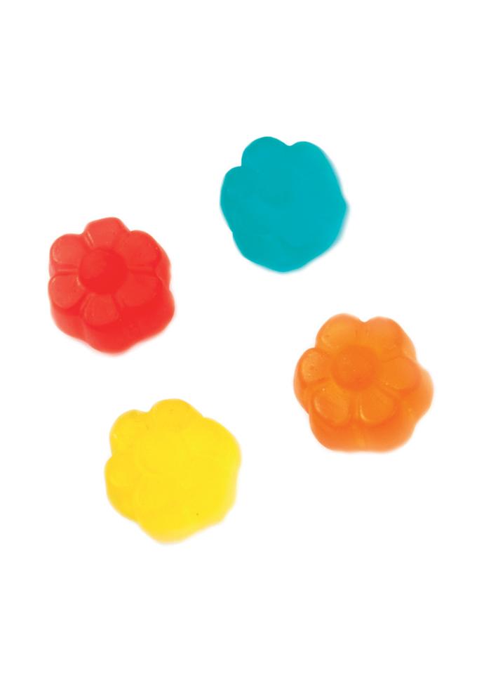 fin0139-fiori-colorati