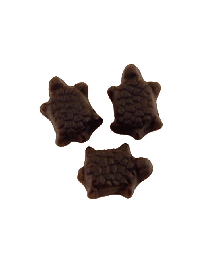 Tartarughe 3 kg papillon caramelle vendita caramelle for Acquario tartarughe vendita online