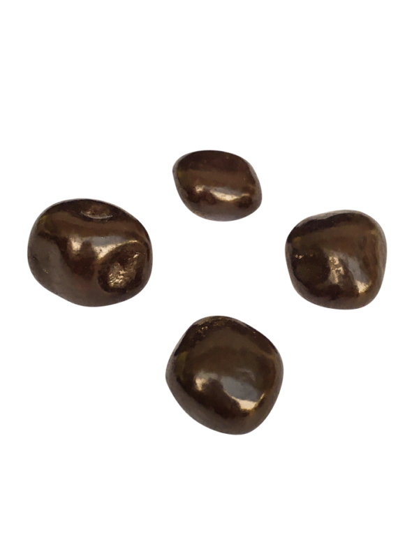 pap0593-mango-ricoperto-di-cioccolato